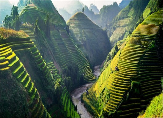 Mu Cang Chai Vietnam in the top 10 most beautiful mountain in the world